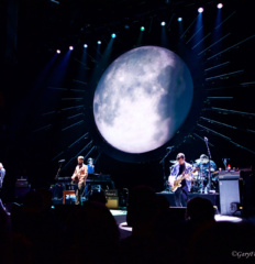 Ray Lamontagne5 watermark