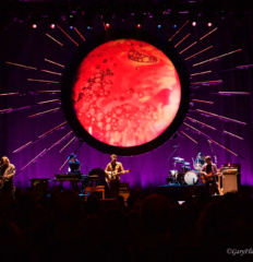 Ray Lamontagne7 watermark